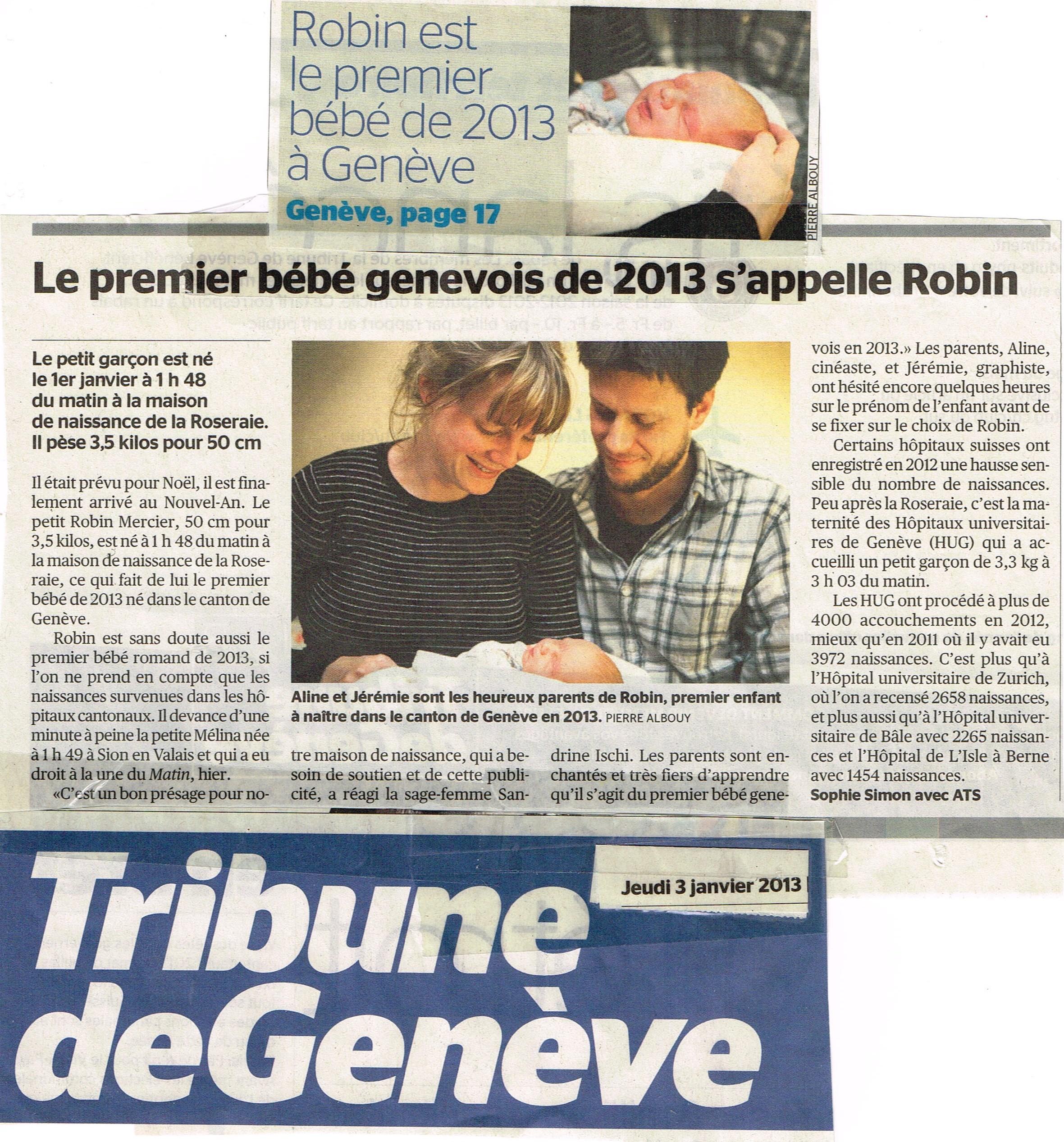 Robin maison de naissance la roseraie for Maison de naissance remiremont